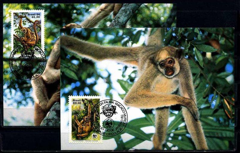 X2509)Brasilien Maxi-Karte 2052/3 WWF 13 Spinnenaffe
