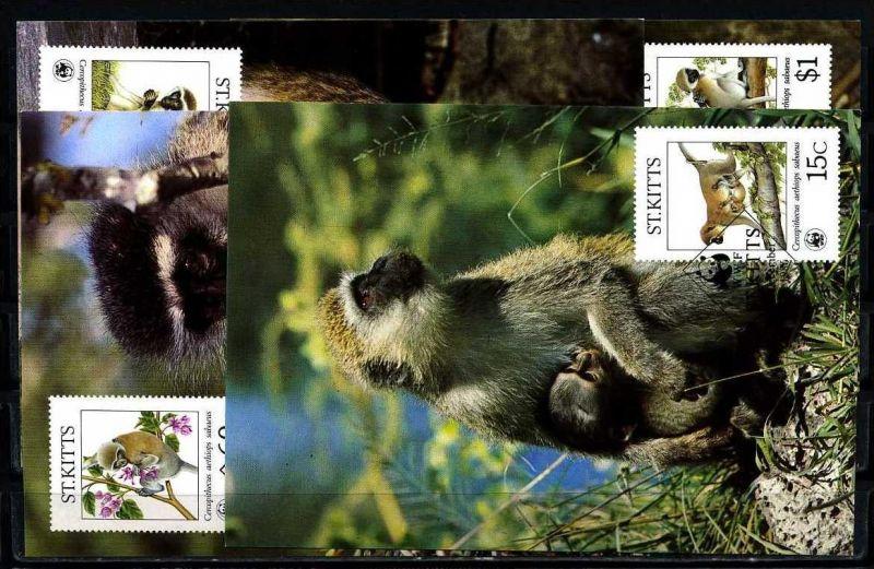 X2529)St. Kitts Maxi-Karte 184/7 WWF 43 Grüne Meerkatze