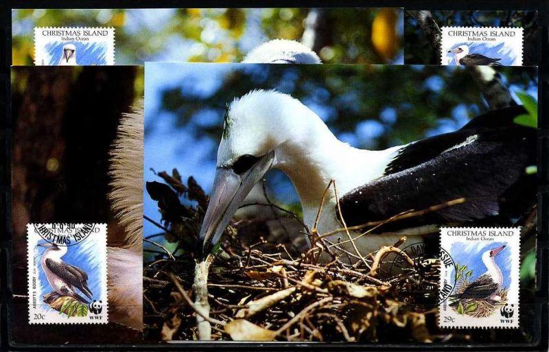 X2537)Christmas Islands Maxi-Karte 303/6 WWF 98 Graufusstölpel