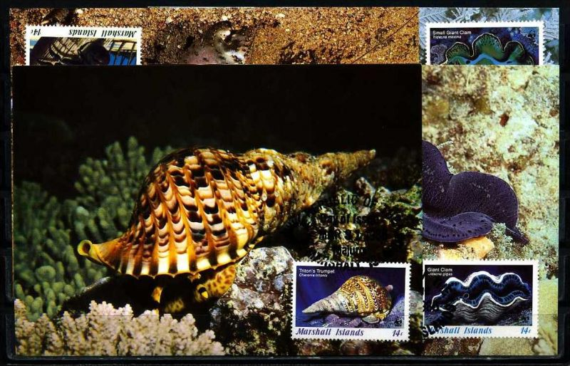 X2541)Marshallinseln Maxi-Karte 73/6 WWF 35 Meerestiere