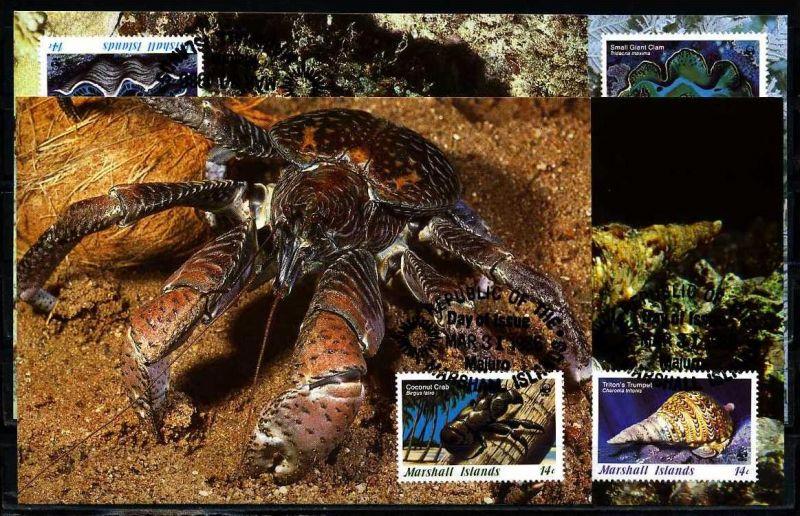 X2542)Marshallinseln Maxi-Karte 73/6 WWF 35 Meerestiere