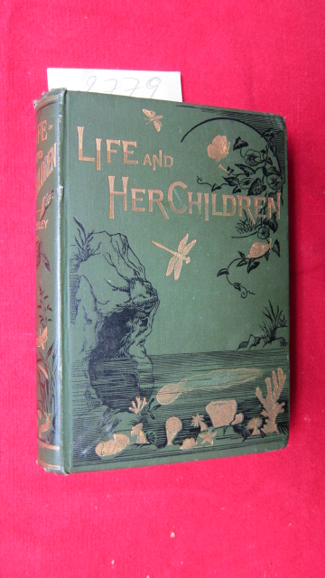 Life and her Children. Glimpses of Animal Life. From The Amoeba to the Insects. EUR