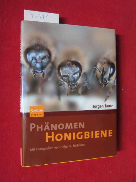 Phänomen Honigbiene. Mit Fotogr. von Helga R. Heilmann / Spektrum-Akademischer-Verlag-Sachbuch. EUR