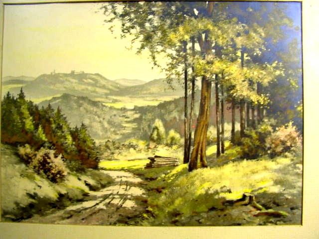 G290/ schöne Waldlandschaft im Rahmen 1