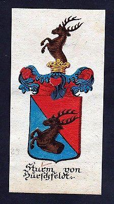 18. Jh - Sturm von Hirschfeld Böhmen Wappen coat of arms Manuskript