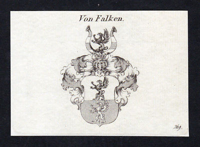 Ca. 1820 Falken Wappen Adel coat of arms Kupferstich antique print heraldry