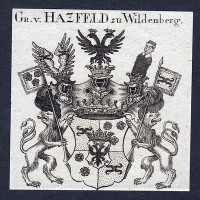 1820 Hazfeld Wildenberg Hatzfeld Hessen Wappen Adel coat of arms engraving