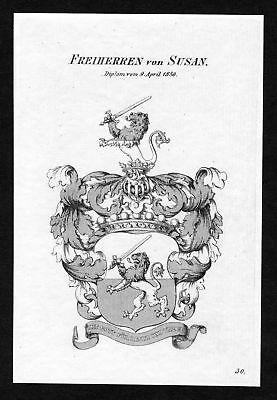 1820 - Susan Wappen Adel coat of arms heraldry Heraldik Kupferstich