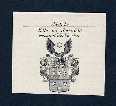 1820 Sternfeld Stetten Weckbecker Wappen Adel coat of arms Kupferstich engraving