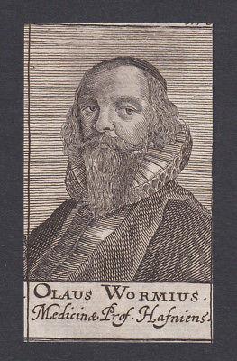 17. Jh. - Ole Worm / physician Antiquar Arzt Copenhagen  Portrait Kupferstich