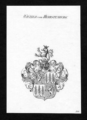 Ca.1820 Walther zu Herbstenburg Wappen Adel coat of arms Kupferstich antique