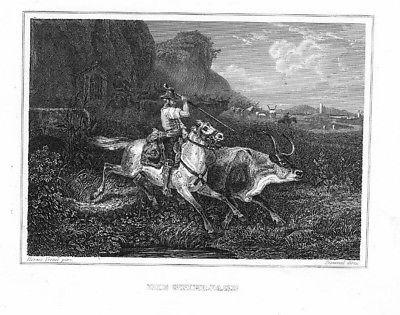 1840 - Stierjagd Ochsenjagd Jagd Original Stahlstich