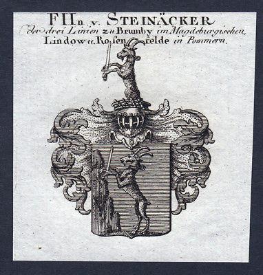 Ca. 1820 Steinaecker Wappen Adel coat of arms Kupferstich antique print heraldry
