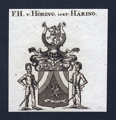 Ca. 1820 Höring Häring Wappen Adel coat of arms Kupferstich antique print
