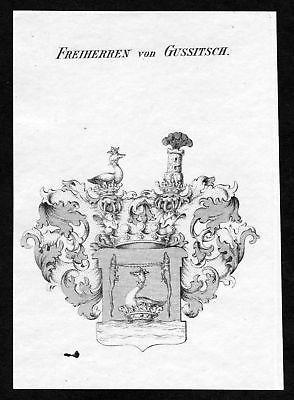 Ca. 1820 Gussitsch Wappen Adel coat of arms Kupferstich antique print heraldry