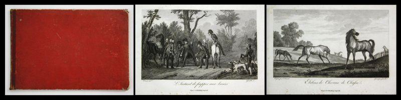 1810 Carle Vernet / F. Gamble - La Chasse au cerf - Jagd hunting engraving Album