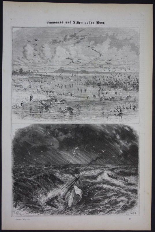 1875 Binnensee Meer Sea Gewässer Hydrologie Holzschnitt antique print