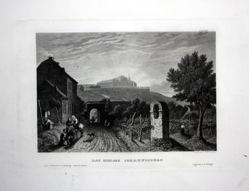 Johannisberg Rheingau Geisenheim-Johannisberg Ansicht Stahlstich antique print