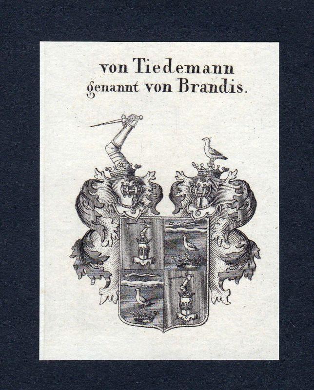 1820 Tiedemann Brandis Wappen Adel coat of arms Heraldik Kupferstich engraving