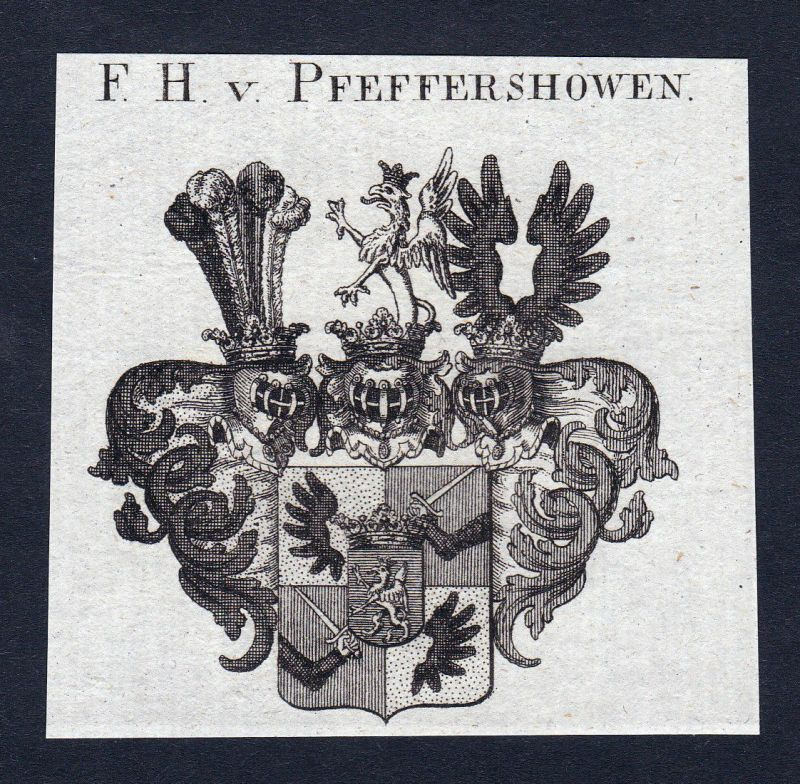 Ca.1820 Pfeffershowen Pfeffershofen Wappen Adel coat of arms Kupferstich antique
