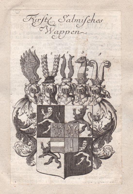 Salm Holy Roman Empire Römisches Reich Adel Wappen coat of arms Kupferstich