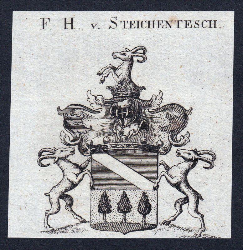 Ca. 1820 Steichentesch Steigentesch Wappen Adel coat of arms Kupferstich antique