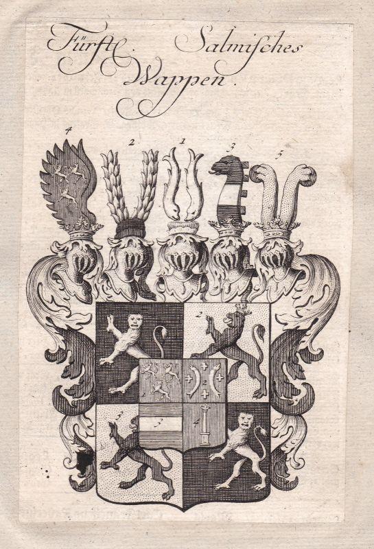 Salm Römisches Reich holy roman empire Adel Wappen coat of arms Kupferstich