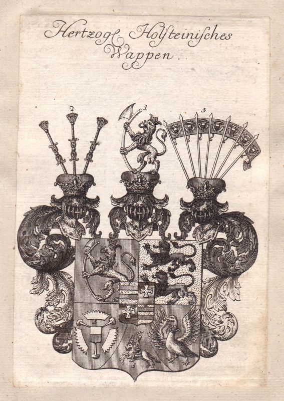 Holstein Schleswig-Holsteins Adel Wappen coat of arms Kupferstich antique print
