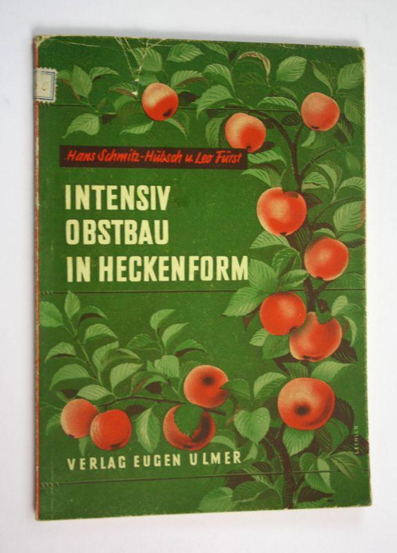 1955 Intensiv Obstbau in Heckenform Garten Gärtnerei Obst Obstanbau Bau