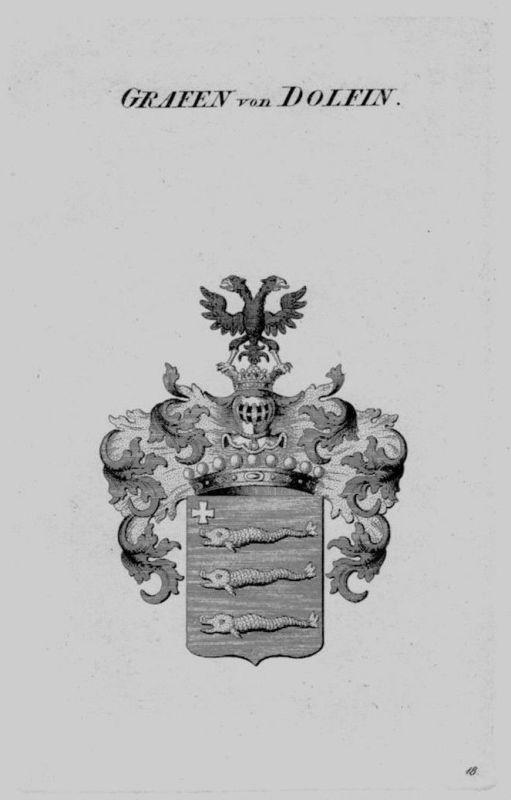 1820 - Dolfin Wappen Adel coat of arms heraldry Heraldik crest Kupferstich 77879