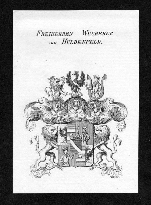 Ca. 1820 Wucherer von Huldenfeld Wappen Adel coat of arms Kupferstich antique