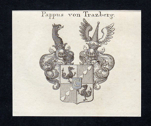 1820 Papen Pape Papius Würzburg Wappen Adel coat of arms Kupferstich engraving