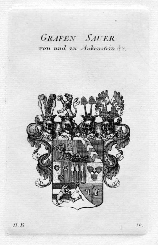 1820 - Sauer Ankenstein Wappen Adel coat of arms heraldry Heraldik Kupferstich