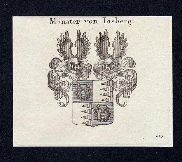 1820 Münster Lisberg Bamberg Wappen Adel coat of arms Kupferstich engraving