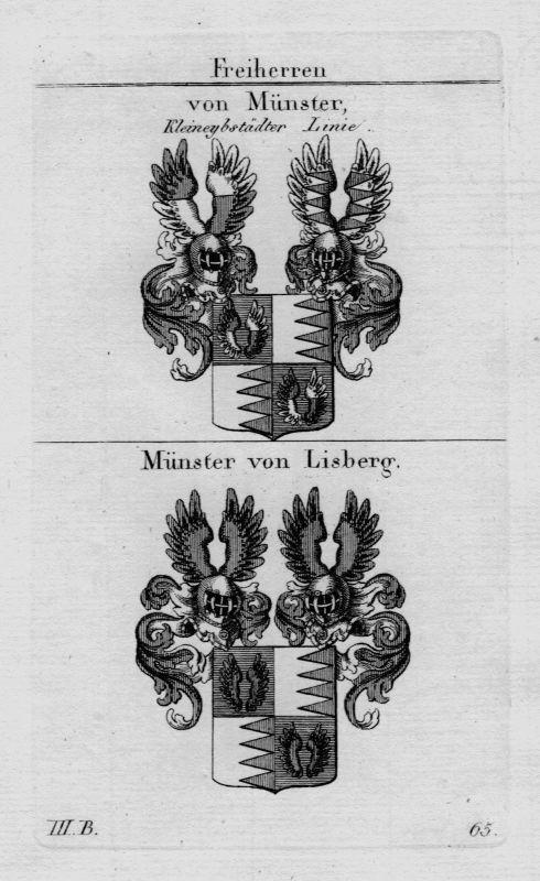1820 - Münster Lisberg Wappen Adel coat of arms heraldry Heraldik  Kupferstich