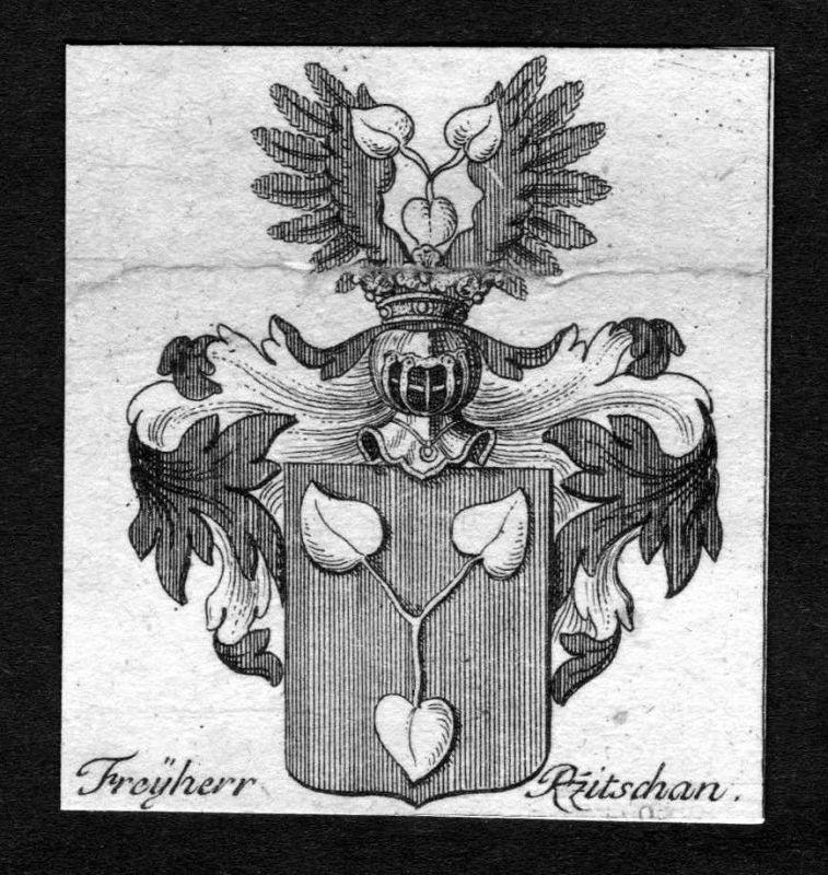 1750 - Rzitschan Wappen Adel coat of arms heraldry Heraldik Kupferstich