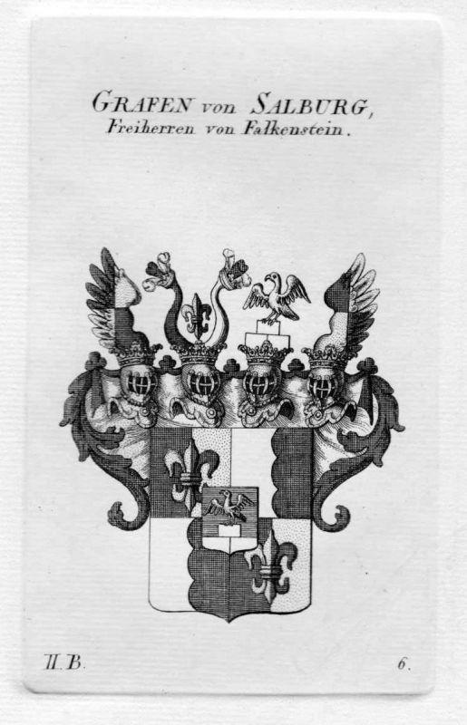 1820 Salburg Falkenstein Wappen Adel coat of arms heraldry Heraldik Kupferstich