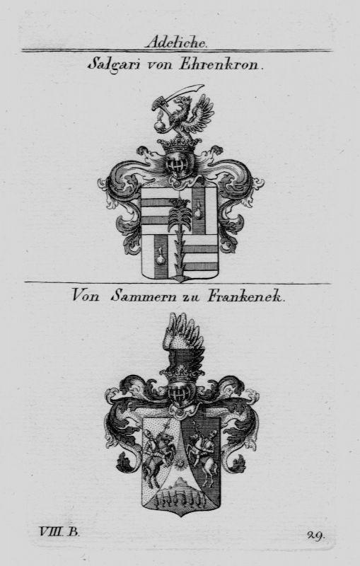 1820 - Salgari Ehrenkorn Sammern Wappen Adel coat of arms heraldry  Kupferstich