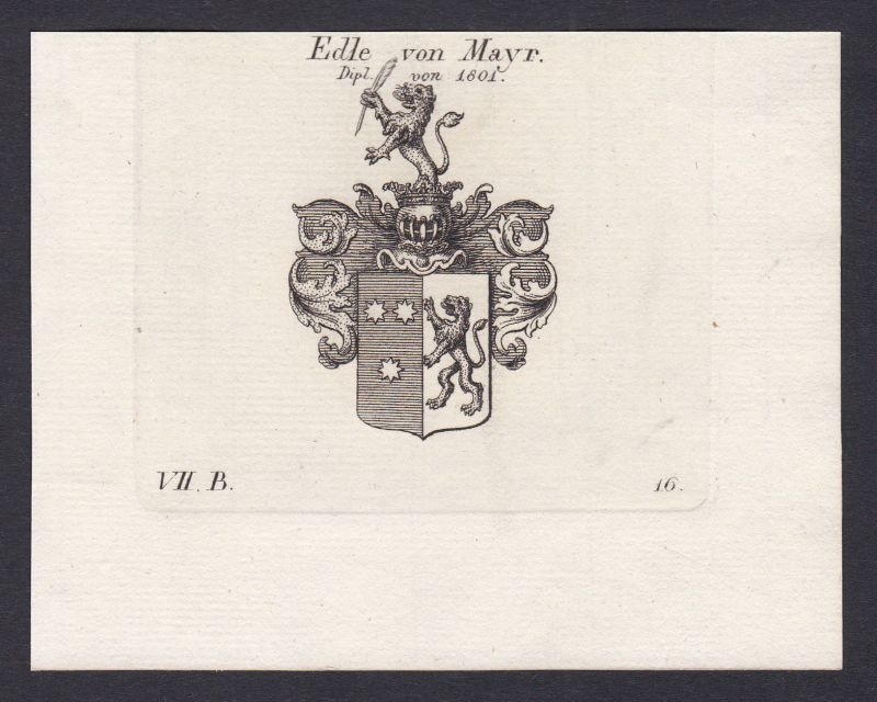 Mayr Mayer Maier Wappen Adel coat of arms Heraldik Kupferstich antique print