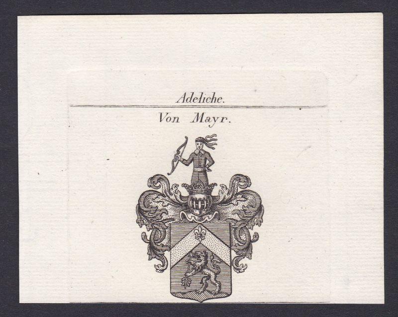 Mayr Mayer Maier Wappen Adel coat of arms Heraldik Kupferstich antique pr 161004