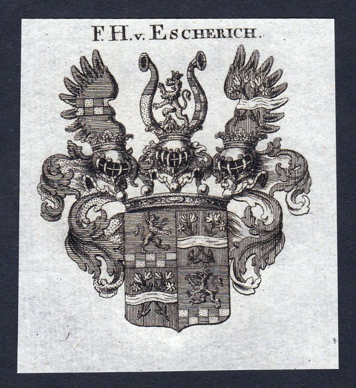 Ca. 1820 Escherich Wappen Adel coat of arms Kupferstich antique print her 144652