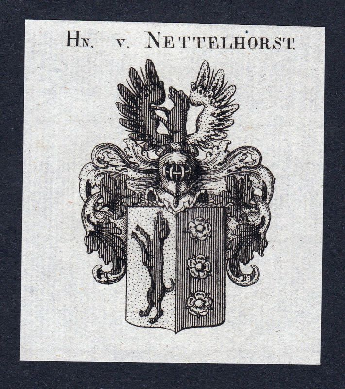 Ca. 1820 Nettelhorst Wappen Adel coat of arms Kupferstich antique print h 144947