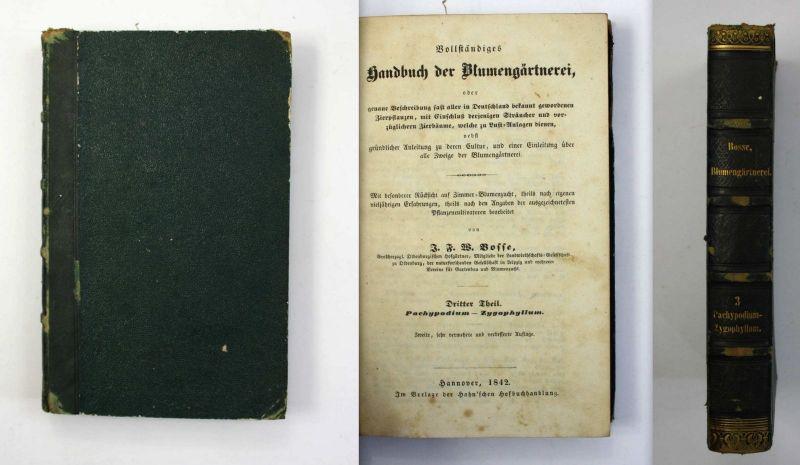 Bosse Handbuch der Blumengärtnerei 1842 Botanik Gärtnerei Blumen Garten