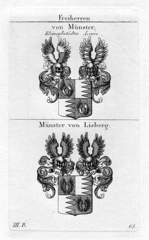 Münster Lisberg - Wappen Adel coat of arms heraldry Heraldik Kupferstich