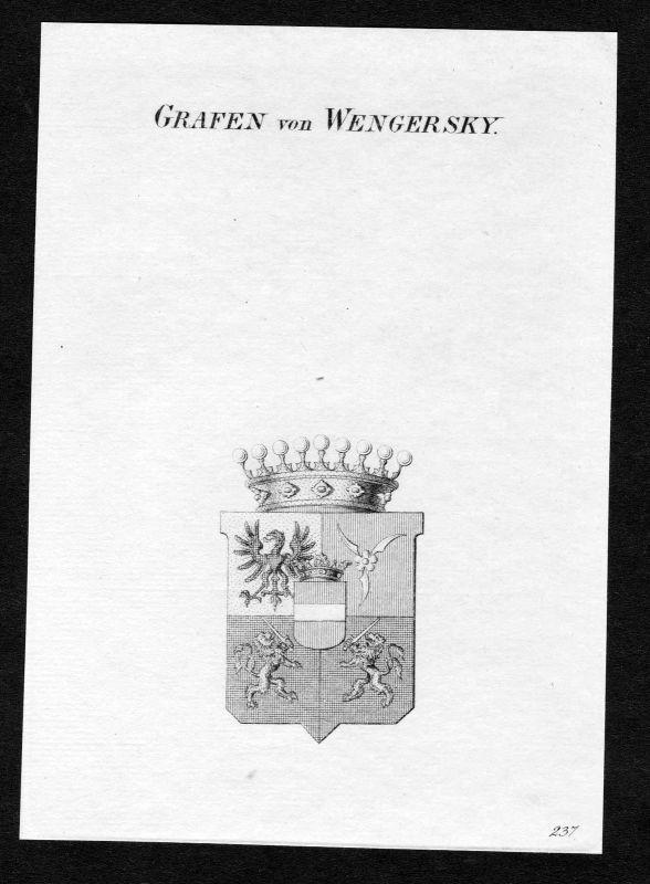 Ca. 1820 Wengersky Wappen Adel coat of arms Kupferstich antique print heraldry