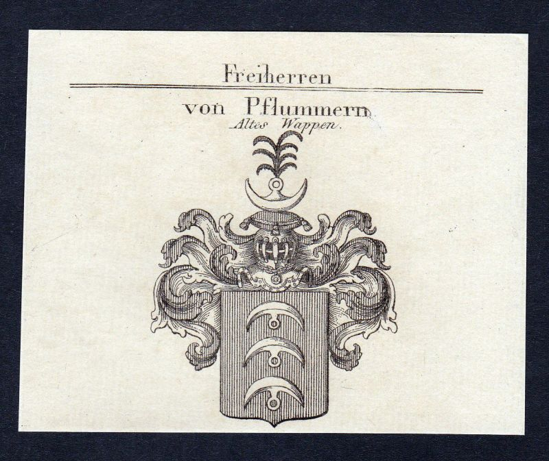 1820 Karl Pflummern Wappen Adel coat of arms Heraldik Kupferstich engravi 140636
