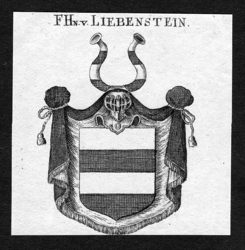 1820 - Liebenstein Wappen Adel coat of arms heradlry Heraldik Kupferstich