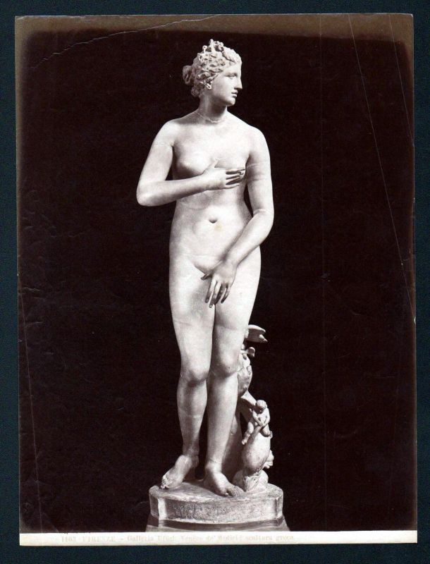 Ca. 1880 Venere di Medici scultura greca Firenze albumen Foto photo vintage