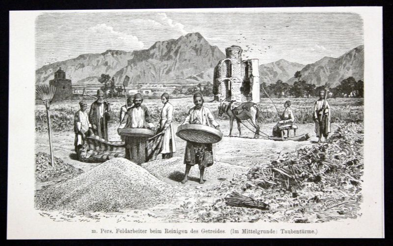 Pers. Feldarbeiter Reinigen Getreides Persien Iran Asien Asia antique print