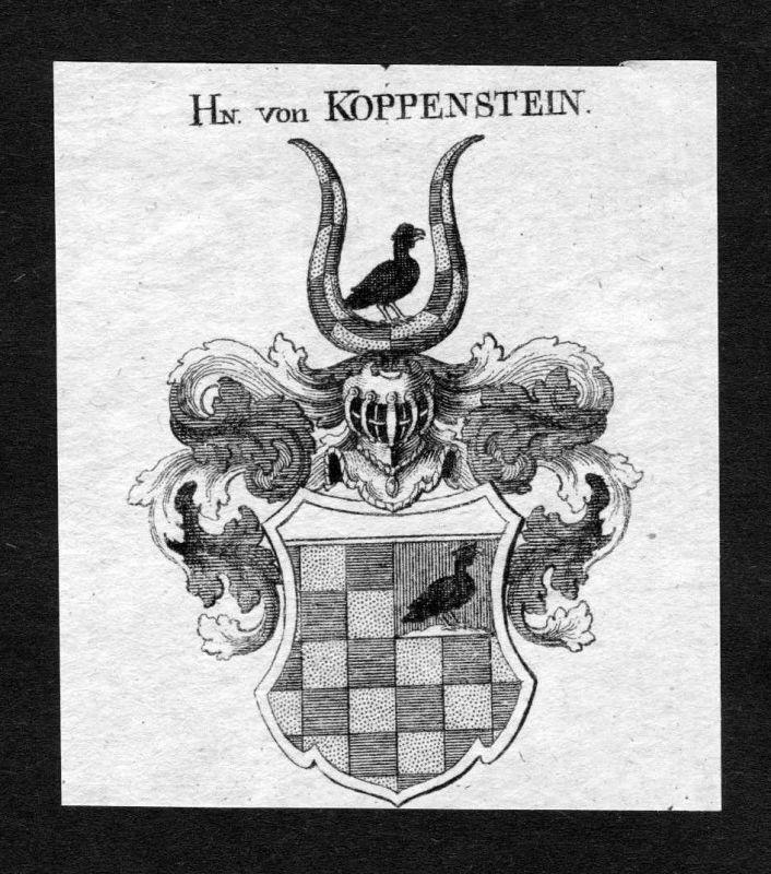 1820 - Koppenstein Wappen Adel coat of arms heradlry Heraldik Kupferstich